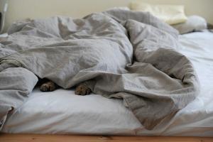 Mýty, které se týkají spánku. Věříte jim taky?