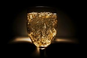 Šampaňské brut pohladí chuťové buňky všech milovníků suchého vína. Co ho charakterizuje?