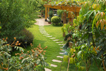 Zahradní architektura: postavte si pergolu!