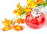 Parfém mluví za vás. Vůně jsou důležitější, než si většina lidí myslí