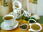 Bylinné čaje – strážci našeho zdraví