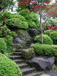 Inspirující japonská zahrada