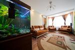 Akvárium - živý doplněk interiéru