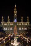Do Vídně nejen na vánoční trhy