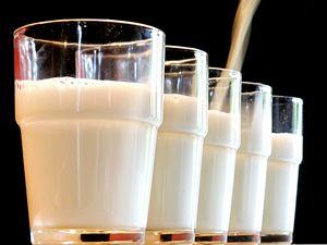 Život bez mléka. Jaké jsou alternativy mléčných výrobků?