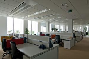 Firmy ruší open space: Otevřené kanceláře narušují koncentraci zaměstnanců