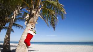 Veselé a slunečné Vánoce